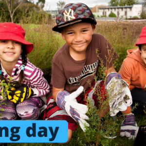 Image for Southern Regional Parks Planting days