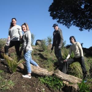 Image for Enviro Trail Blitz